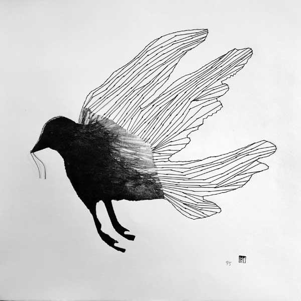 Gravure oiseeau noir par Brigitte Touvron graveur